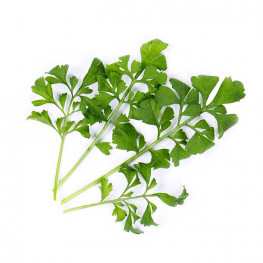 Organic Watercress Lingot®