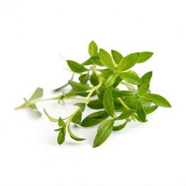 Organic Savory Lingot®