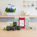 Holiday Gift box Lingots & Accessory