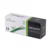 Chives Lingot
