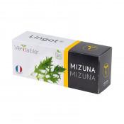 Lingot® Véritable® Mizuna