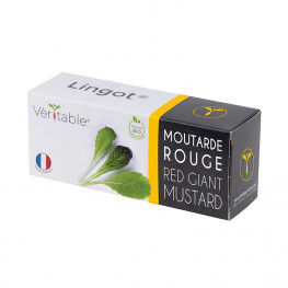 moutarde rouge