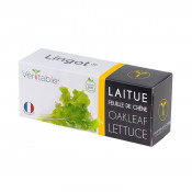 Organic Oakleaf Lettuce Lingot