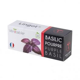 Lingot Basilic Pourpre