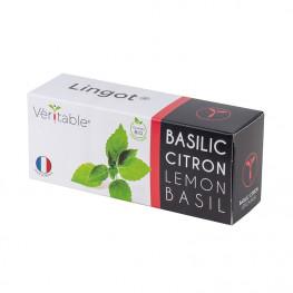 Lemon Basil Lingot