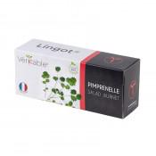 Lingot® Pimprenelle BIO