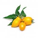 Lingot® Mini tomate jaune