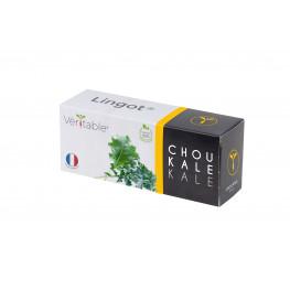 Lingot® Chou kale