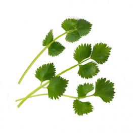 Lingot® Anis vert BIO