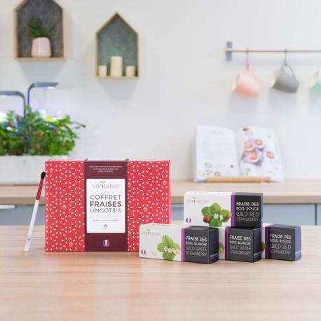 Coffret fraises - Lingots® & pinceau de pollinisation