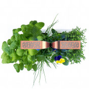 Potager Smart Copper