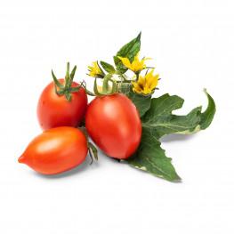 Lingot® Mini rote Tomate