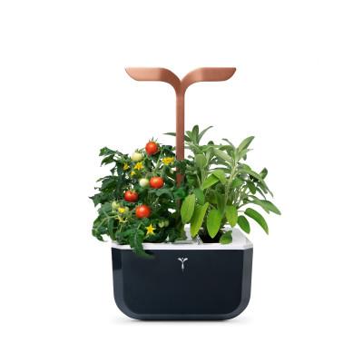 SMART Copper Exky® garden