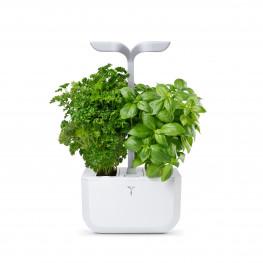 SMART Exky® garden