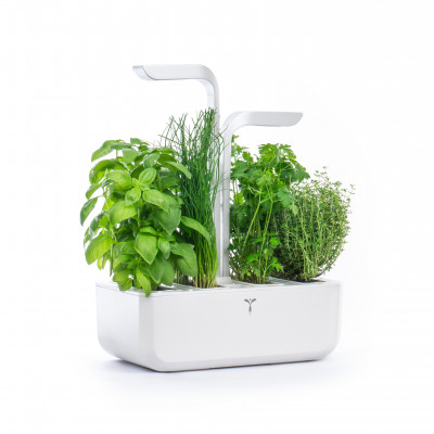 CLASSIC Véritable® Garden