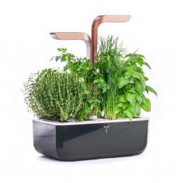 SMART Copper Véritable® Garden
